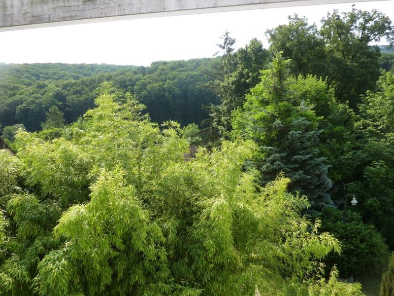 Großzügige Villenetage auf zwei Ebenen mit Garten und Kfz-Stellplätzen in Bestlage /  / 3400Klosterneuburg / Bild 2