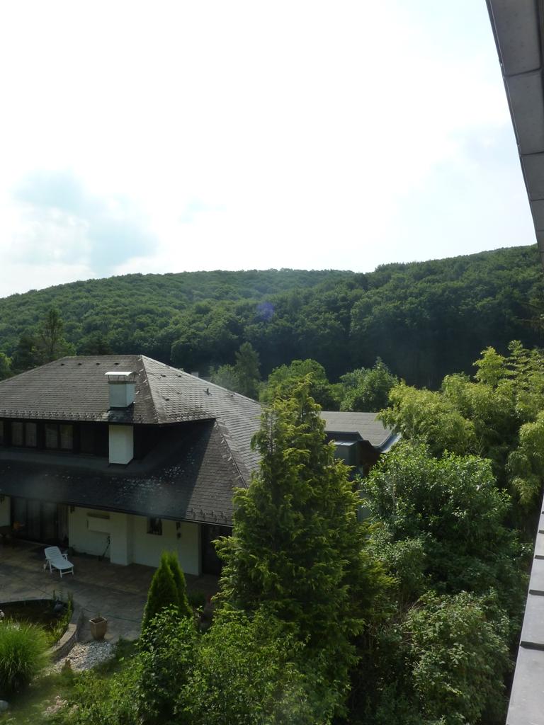 Großzügige Villenetage auf zwei Ebenen mit Garten und Kfz-Stellplätzen in Bestlage /  / 3400Klosterneuburg / Bild 7