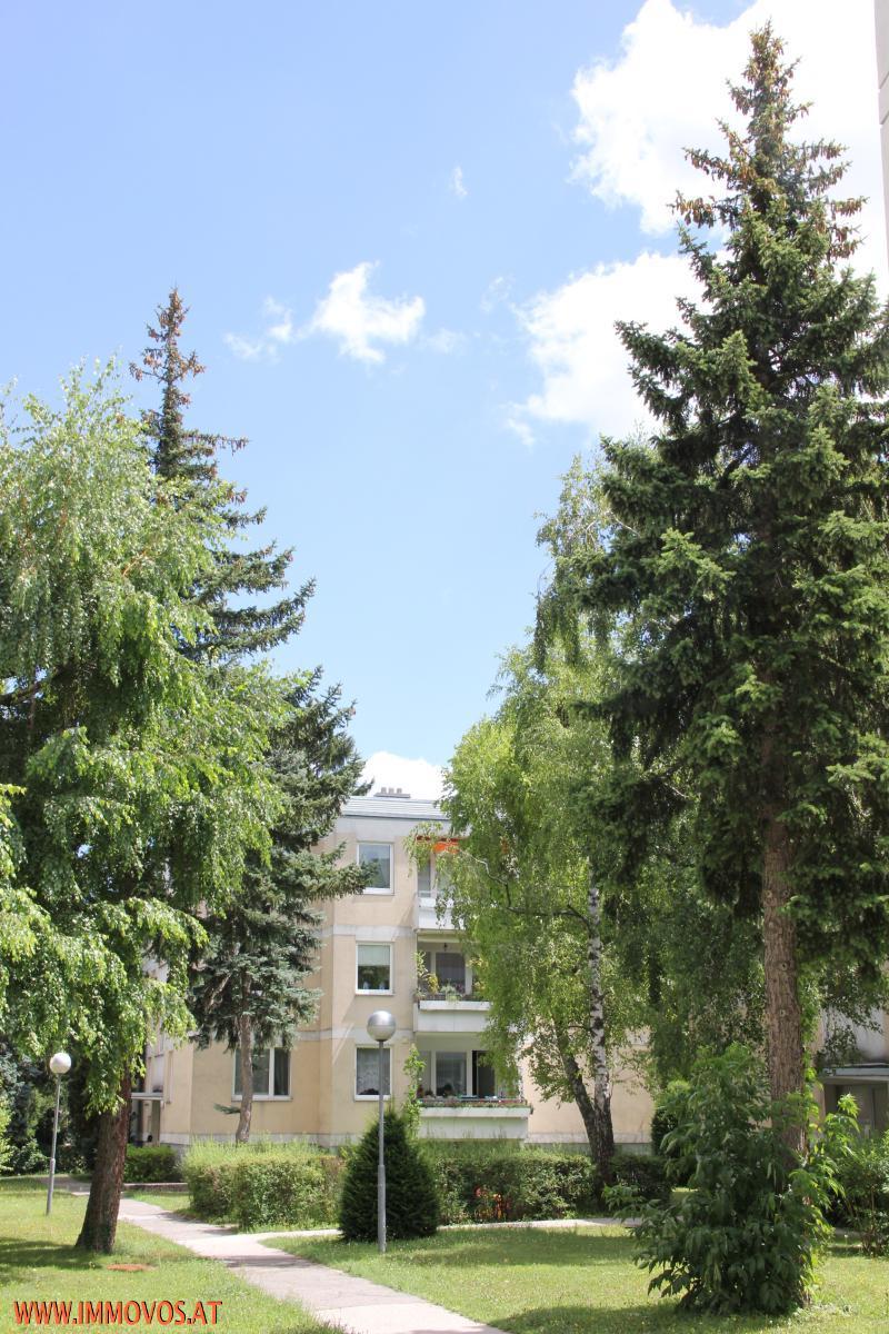 Sehr helle 3-Zimmer Mietwohnung mit 2 Loggias in Rodaun! /  / 1230Wien 23.,Liesing / Bild 0
