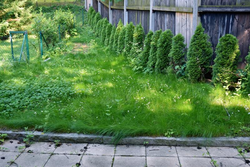 *Wunderschöne Familienwohnung mit Garten und Terrassen* /  / 1130Wien 13.,Hietzing / Bild 1