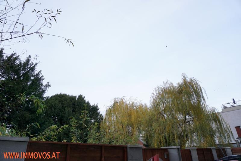 Gartenausblick vom Innenhof