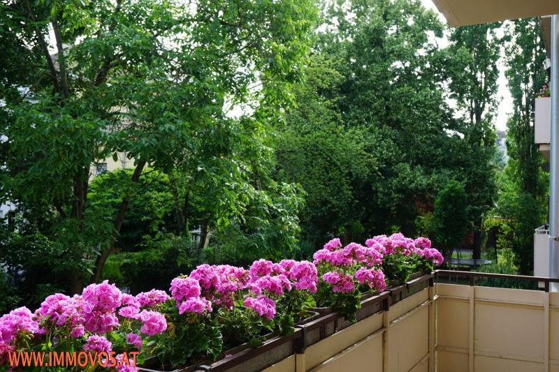 Gartenblick vom Balkon