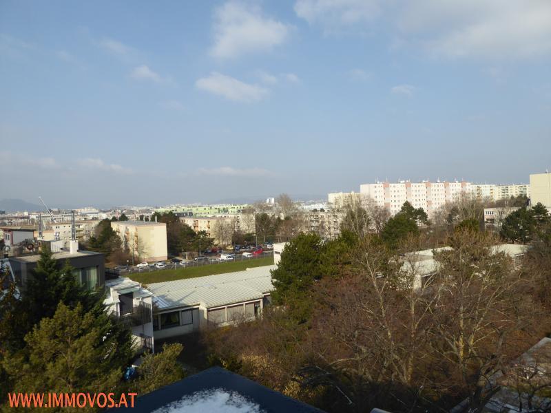***DG-ERSTBEZUG - eine Ebene - 2 Terrassen*** /  / 1220Wien 22.,Donaustadt / Bild 3