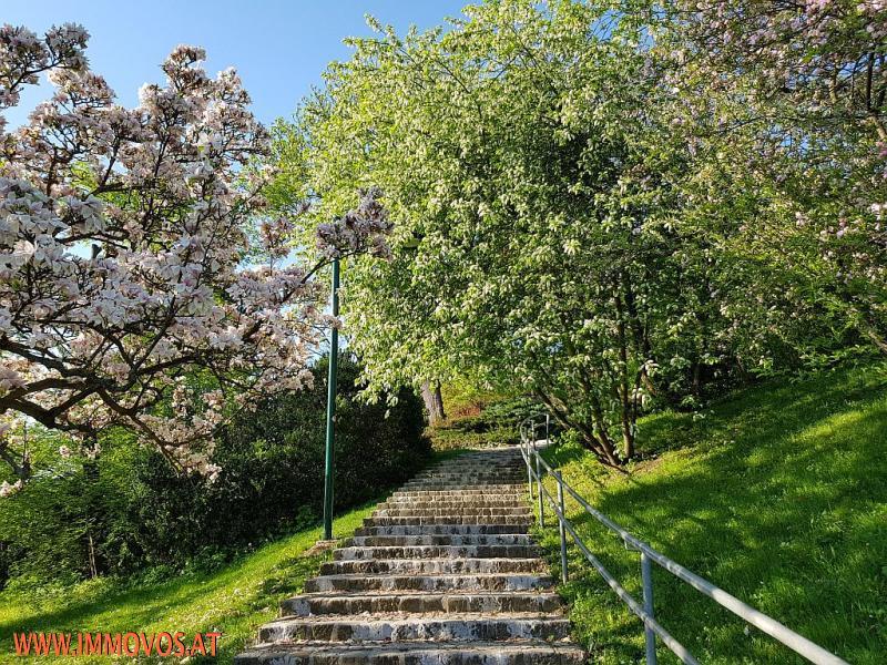 Wertheimsteinpark