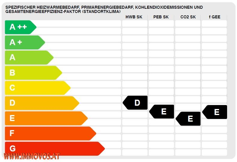 Energieausweis Auszug