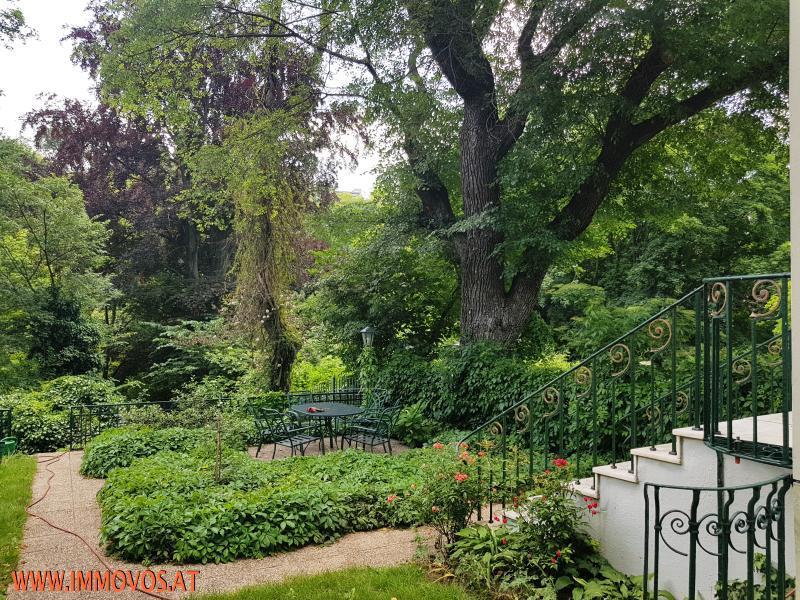 Garten_4_.jpg