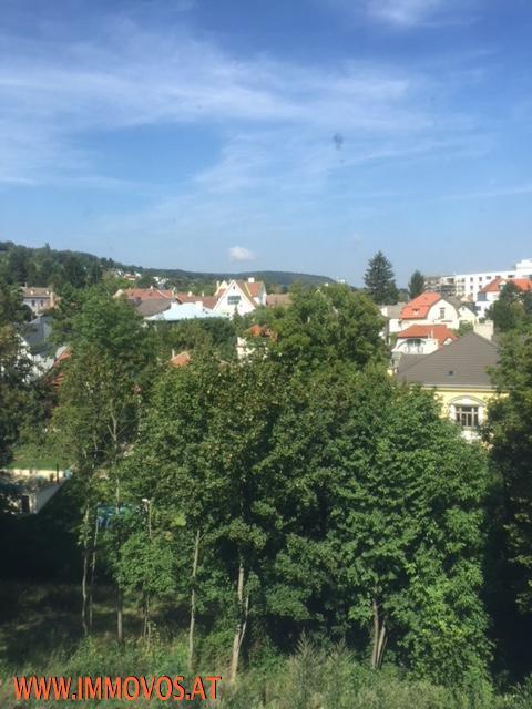 Panoramagrünblick - Ruhelage...Repräsentative Terrassenwohnung in Klosterneuburg /  / 3400Klosterneuburg / Bild 1
