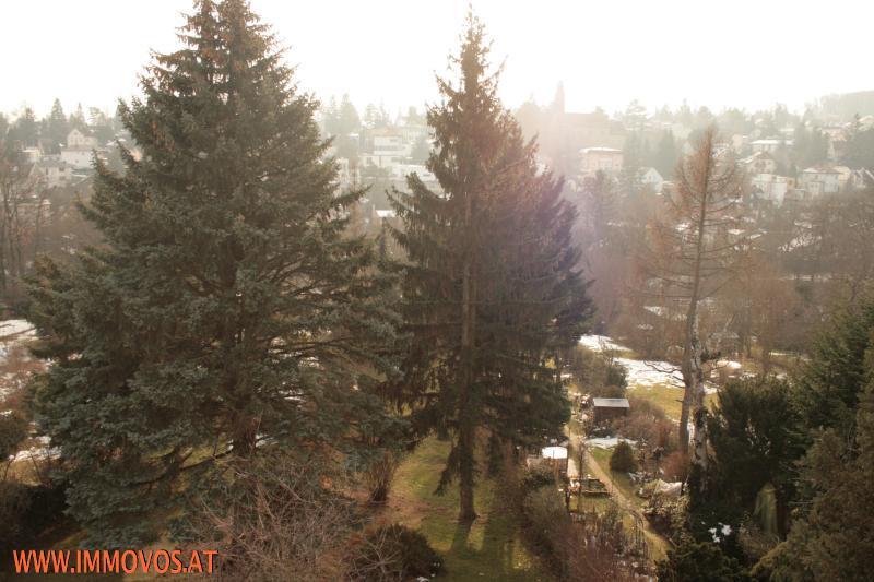 gbild -- SÜDSEITIGE  Maisonette mit Traumausblick Nähe Lainzer Tiergarten /  / 1130Wien 13.,Hietzing / Bild 9