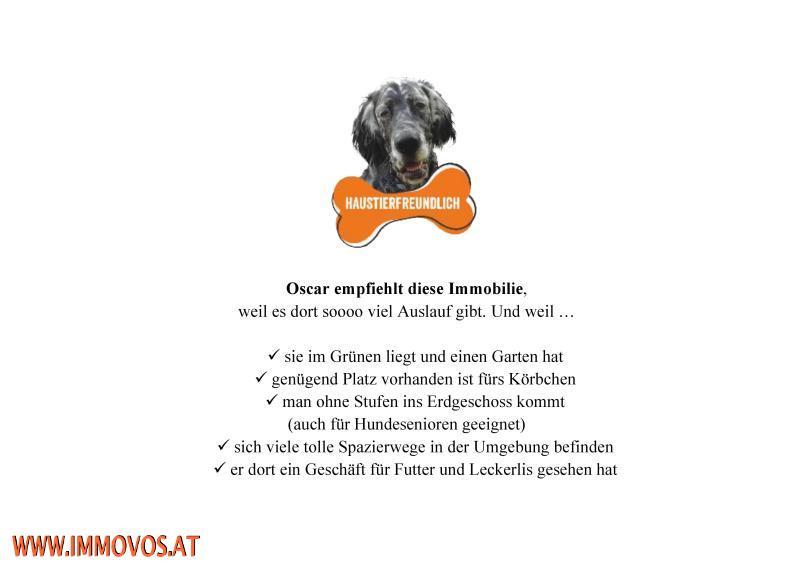 Checkliste Oscar_32671 (3).jpg