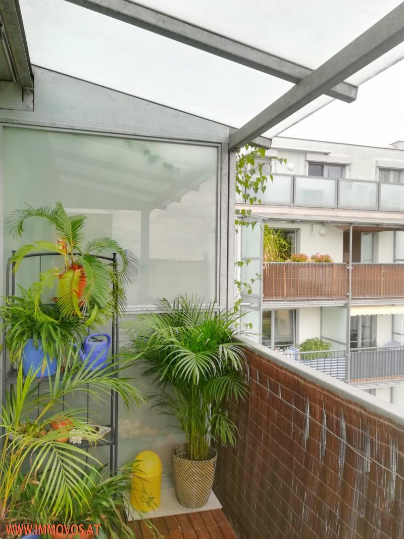 gbild -- 3 Zi Wohnung U3-Nähe /  / 1140Wien 14.,Penzing / Bild 4