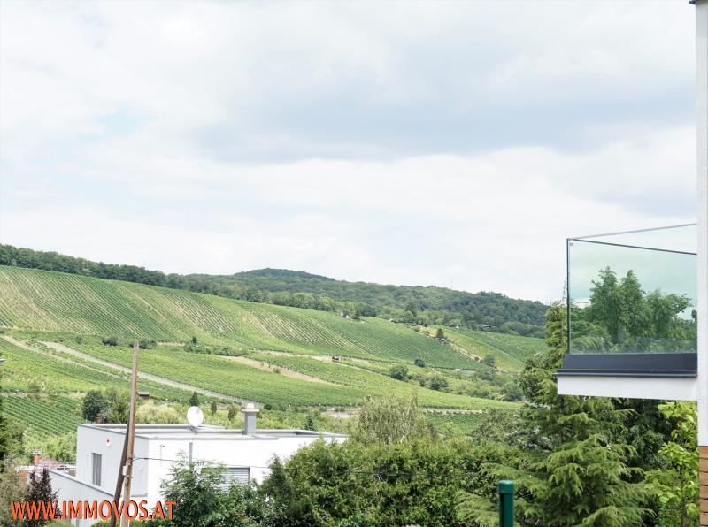 Neustift am Walde - trendige Neubauvilla - Wohnen und relaxen für Ihre Familie! /  / 1190Wien 19.,Döbling / Bild 2