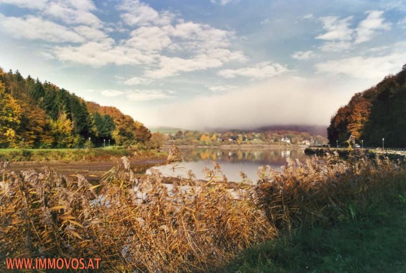 1 Wienerwaldsee