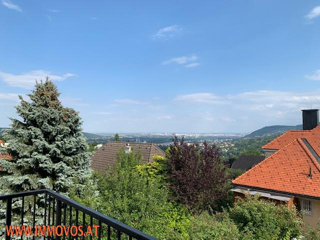 Ausblick Terrasse.jpg