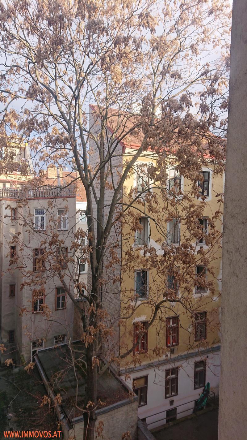 4 Zimmer++unbefristet++Hofgarten /  / 1120Wien 12.,Meidling / Bild 4
