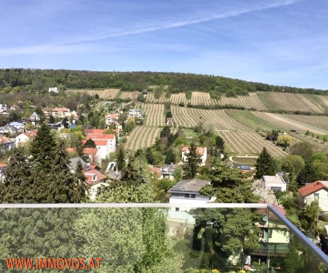 Enjoy living at this modern exclusive family home + panoramic view + garden + garage /  / 1190Wien 19.,Döbling / Bild 1