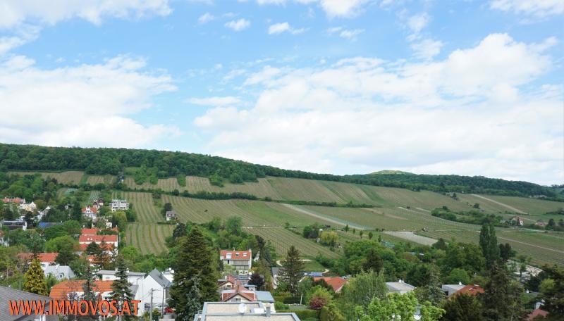 Panorama Ausblick über die Weingärten