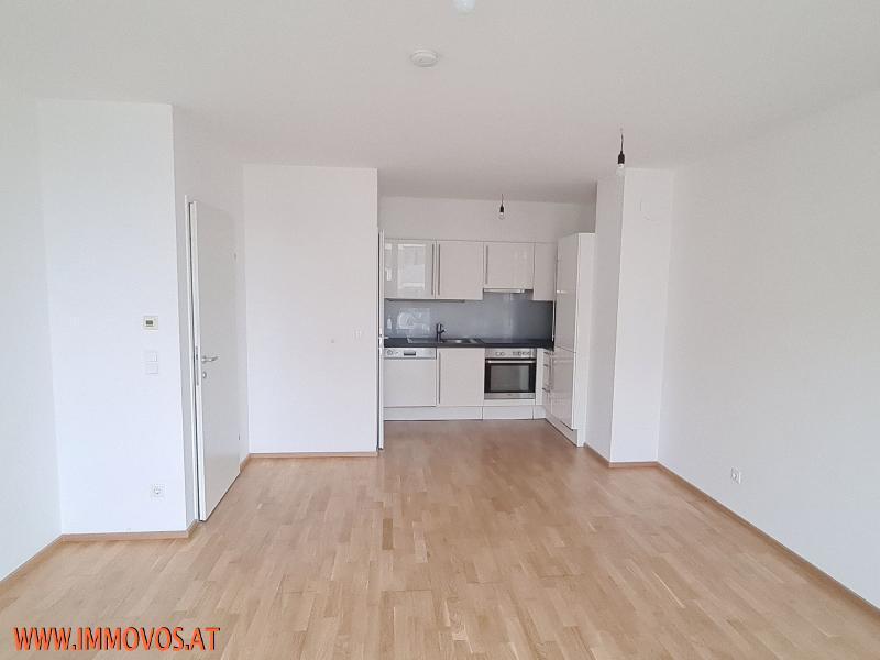 Wohn-Essbereich mit Küche
