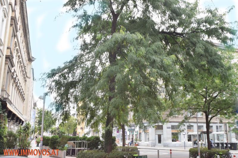 +NEU+UNSANIERTE-38,25M2-2 ZIMMERWOHNUNG IM KARMELITERVIERTEL-AUGARTEN, 1020 WIEN /  / 1020Wien 2.,Leopoldstadt / Bild 9