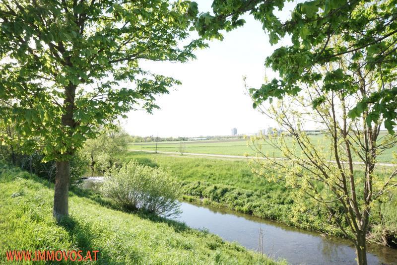 grünes Freizeit-Areal entlang des Liesingbaches