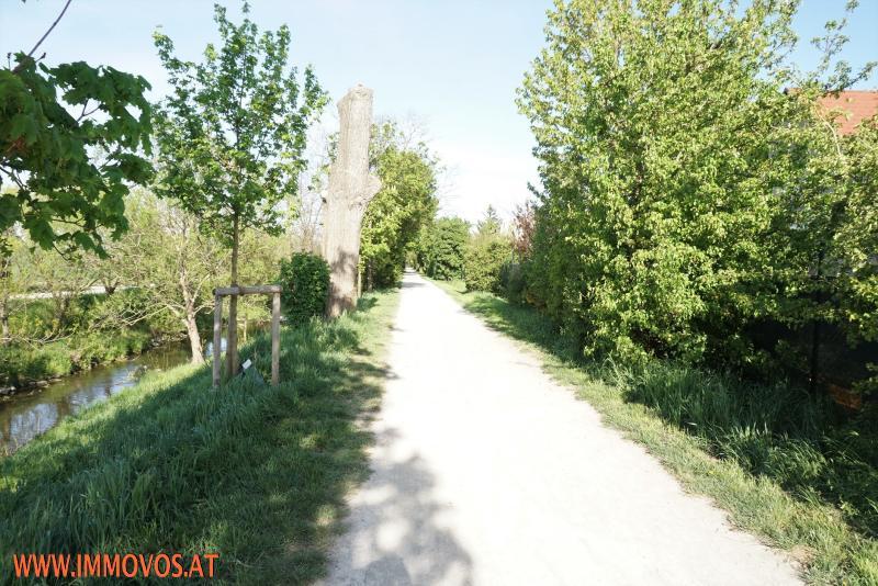 Spazierweg entlang des Liesingbachs