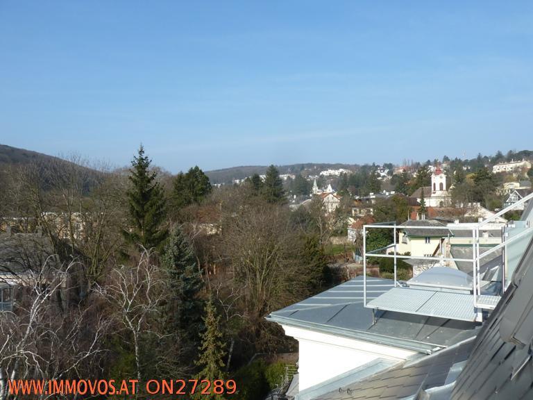 Über den Dächer von Pötzleinsdorf ...