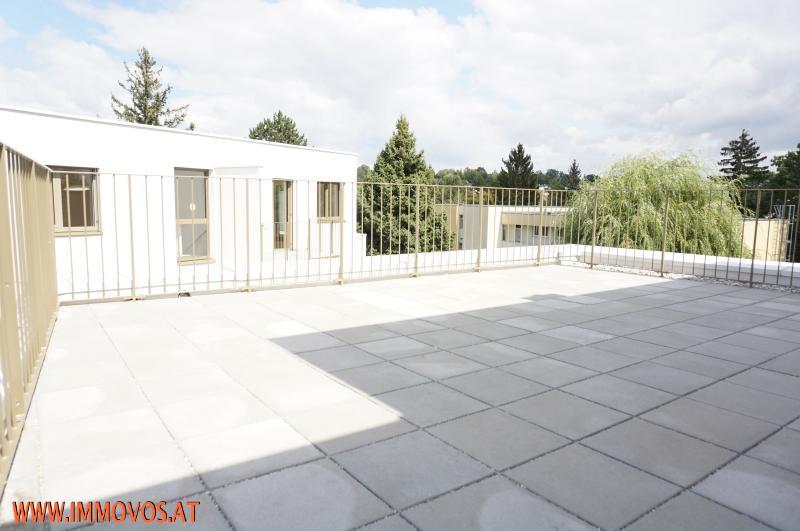 Das Leben genießen in Rodaun:  ERSTBEZUG -  3 Zimmer Wohnung mit Riesen-Terrasse! /  / 1230Wien 23.,Liesing / Bild 9