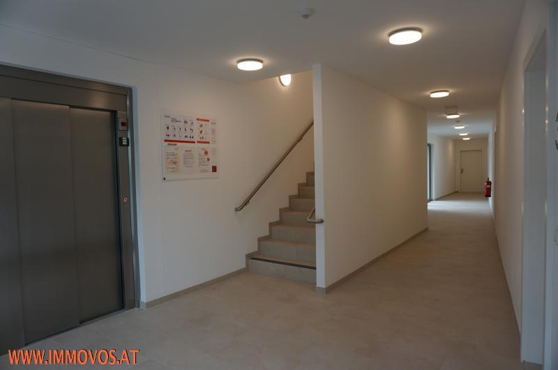 Das Leben genießen in Rodaun:  ERSTBEZUG -  3 Zimmer Wohnung mit Riesen-Terrasse! /  / 1230Wien 23.,Liesing / Bild 3