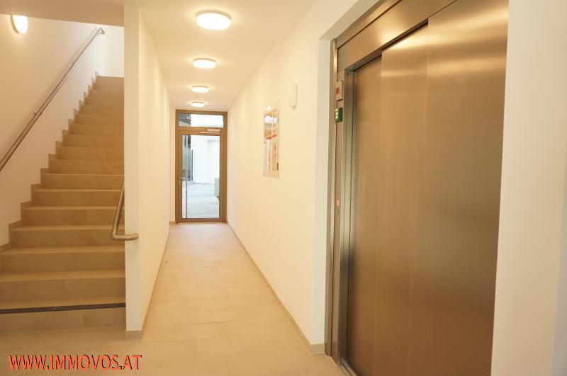 Entspannt wohnen im grünen Rodaun: NAGELNEUE Komfort-Wohnungen zu vermieten + Freifläche + Erstbezug + barrierefrei /  / 1230Wien 23.,Liesing / Bild 7