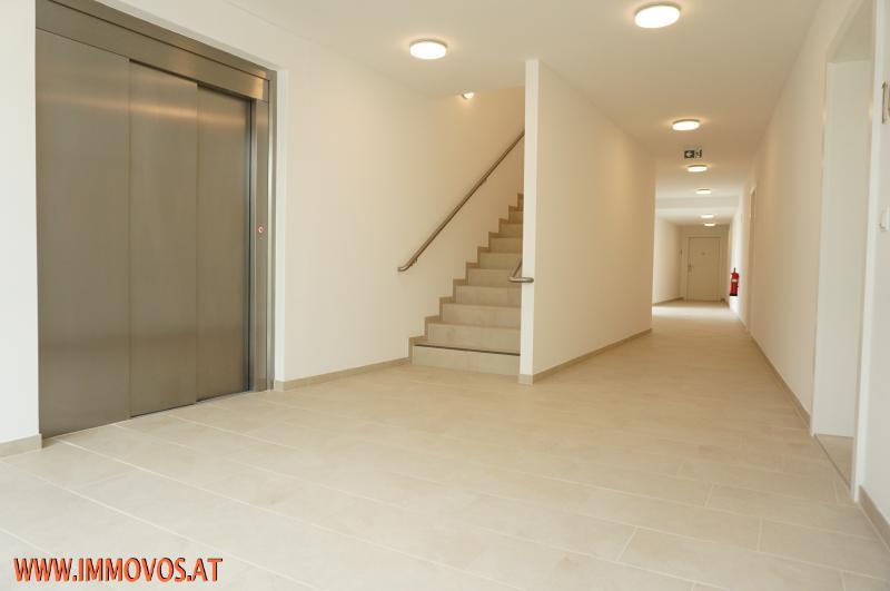 33 m2 Traumterrasse + Erstbezug im grünen Rodaun: 3 Zimmer Wohnung mit sonniger Freifläche zu vermieten + Garagenplatz /  / 1230Wien 23.,Liesing / Bild 3